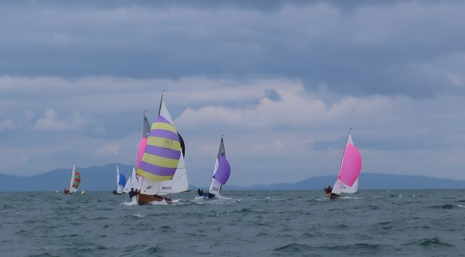 SSC Regatta 2019 – Full results!